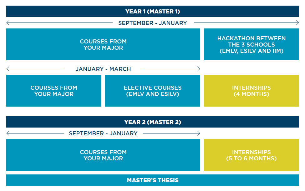master in management course structure - Master in Management